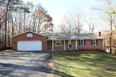 Botetourt County Single Family Home For Sale: 132 Silverbirch Dr