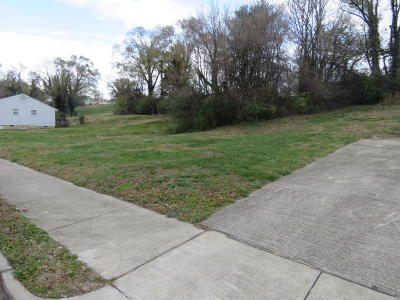 Roanoke Residential Lots & Land For Sale: 215 Harrison Ave NW