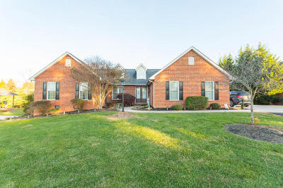 Roanoke County Single Family Home For Sale: 277 Stonegate Dr