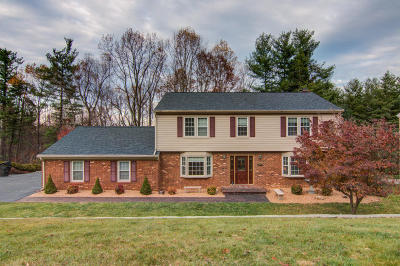 Roanoke County Single Family Home For Sale: 3320 Dawn Cir