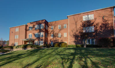 Roanoke County Attached For Sale: 3060 McVitty Forest Dr #316