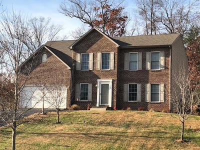 Bedford County Single Family Home For Sale: 124 Montgomery Farms Ave