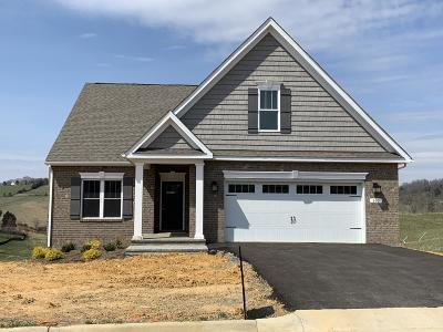 Botetourt County Single Family Home For Sale: Lot 70 Settlers Rd