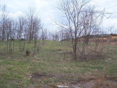 Daleville Residential Lots & Land For Sale: Island Green Rd