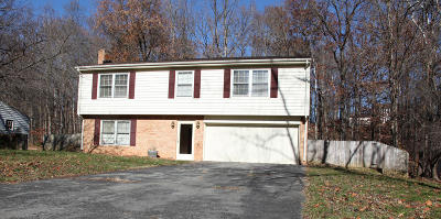 Botetourt County Single Family Home For Sale: 30 Beachmont Dr