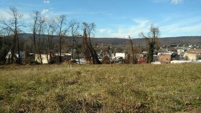 Rocky Mount VA Residential Lots & Land For Sale: $110,000