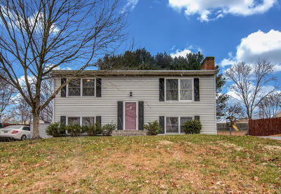 Roanoke County Single Family Home For Sale: 5443 Winterset Dr