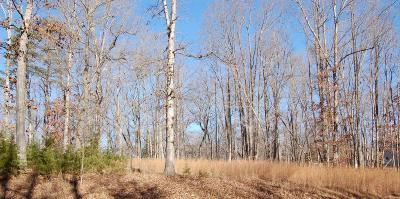 Residential Lots & Land For Sale: Lot 73 Stripers Ln