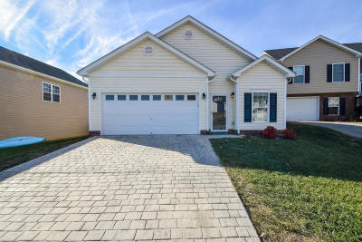 Vinton Single Family Home For Sale: 2614 Stewart View Ter