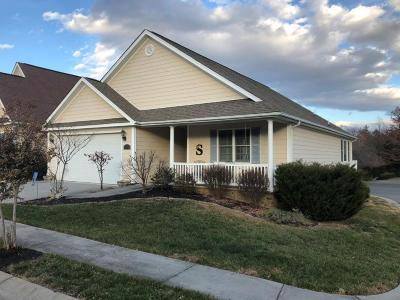Roanoke Single Family Home For Sale: 848 Sumpter Pl