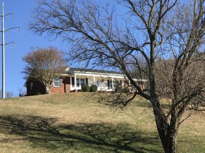 Roanoke Single Family Home For Sale: 5633 Old Mountain Rd