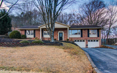 Roanoke Single Family Home For Sale: 4711 Hickory Hill Dr