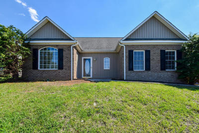 Vinton Single Family Home For Sale: 1131 Mountain View Rd