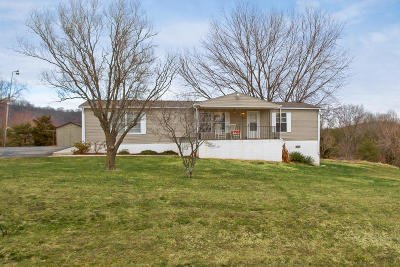 Vinton Single Family Home For Sale: 303 Mountain Meadow Dr