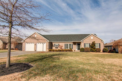 Roanoke County Single Family Home For Sale: 3747 Renfield Dr SW