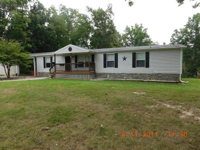 Botetourt County Single Family Home For Sale: 325 Woodson Rd
