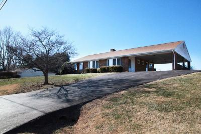 Roanoke Single Family Home For Sale: 7424 Tinkerview Rd