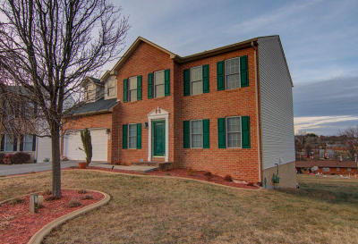 Vinton Single Family Home For Sale: 217 Minnie Bell Ln