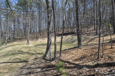 Roanoke County Residential Lots & Land For Sale: 5457 Woodchuck Ln