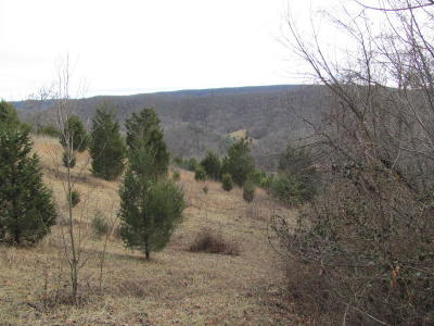 Roanoke County Residential Lots & Land For Sale: Blacksburg Rd