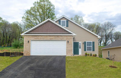 Roanoke Single Family Home For Sale: 7910 Carriage Park Dr