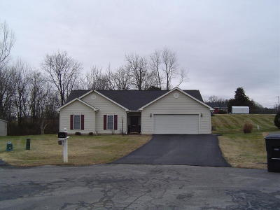 Roanoke Single Family Home For Sale: 5861 Buckland Mill Rd