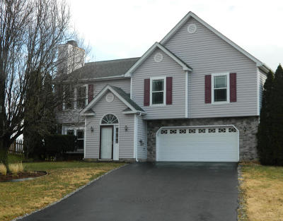 Roanoke Single Family Home For Sale: 4919 Orchard Park Dr