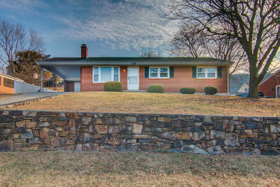 Roanoke Single Family Home For Sale: 6339 Nell Dr