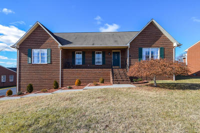 Vinton Single Family Home For Sale: 445 Edgemont Cir