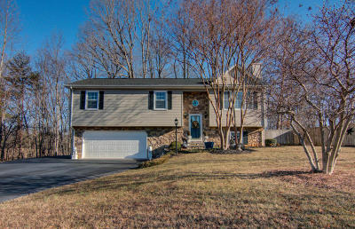 Vinton Single Family Home For Sale: 1404 Gravel Hill Rd