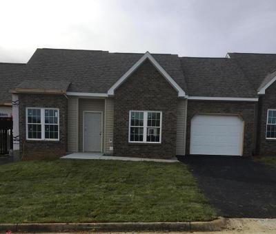 Botetourt County Attached For Sale: 109 Villa Ct