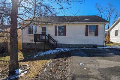 Roanoke Single Family Home For Sale: 722 Normandy St NE