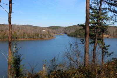 Pittsylvania County Residential Lots & Land For Sale: Lot 140 Noah's Knoll