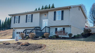 Roanoke County Single Family Home Sold: 554 Hillview Dr