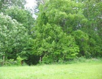 Roanoke County Residential Lots & Land For Sale: Holiday Cir