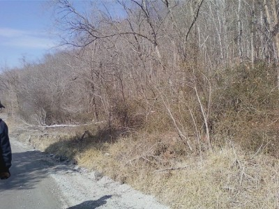 Residential Lots & Land For Sale: Solitude Rd