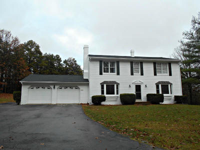 Botetourt County Single Family Home For Sale: 541 Stonehaven Ln