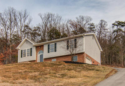 Roanoke County Single Family Home For Sale: 4823 Old Mountain Rd