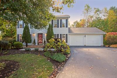 Single Family Home For Sale: 6059 Chagall Dr