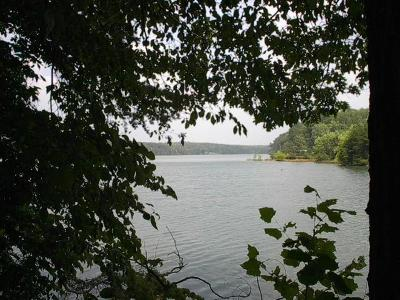 Pittsylvania County Residential Lots & Land For Sale: Tract E Gryders Pointe