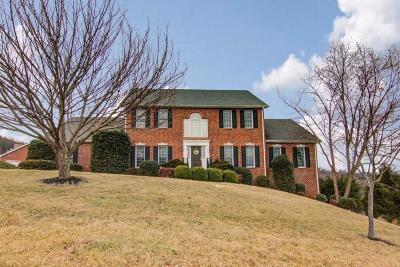 Roanoke Single Family Home For Sale: 5827 Winnbrook Dr