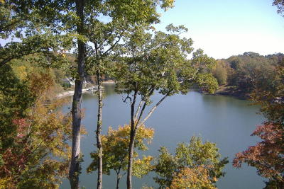 Single Family Home For Sale: 1695 Mallard Point Rd