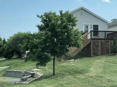 Roanoke Single Family Home For Sale: 941 Georgia Ave NE