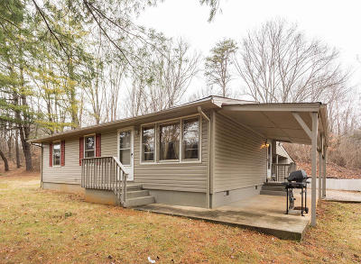 Roanoke County Single Family Home For Sale: 1018 Thurman Dr