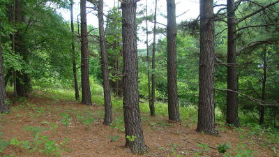 Bedford County Residential Lots & Land For Sale: Lot 27 Watchtower Dr