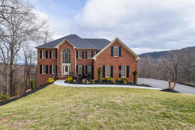 Roanoke VA Single Family Home For Sale: $795,000