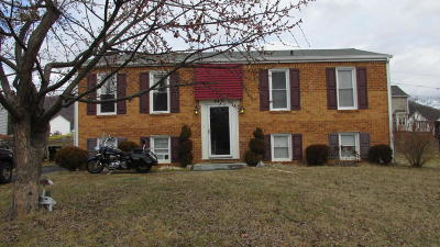 Roanoke County Single Family Home For Sale: 447 Stoneacres Dr