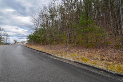 Roanoke County Residential Lots & Land For Sale: 5941 Paddington Ct