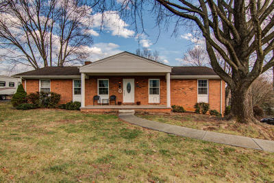 Daleville Single Family Home For Sale: 64 Oxford Cir