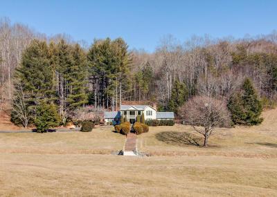 Stuart VA Single Family Home For Sale: $699,000